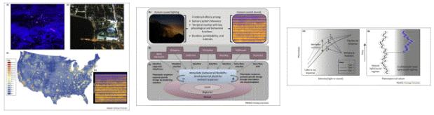 A framework to assess evolutionary responses to anthropogenic light andsound
